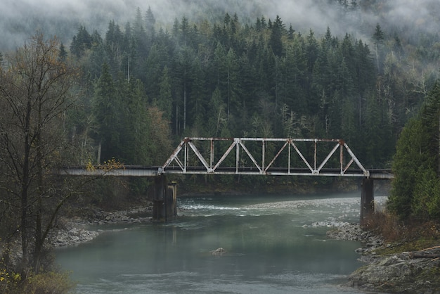 Old bridge over a river in the forest on a cold cloudy day