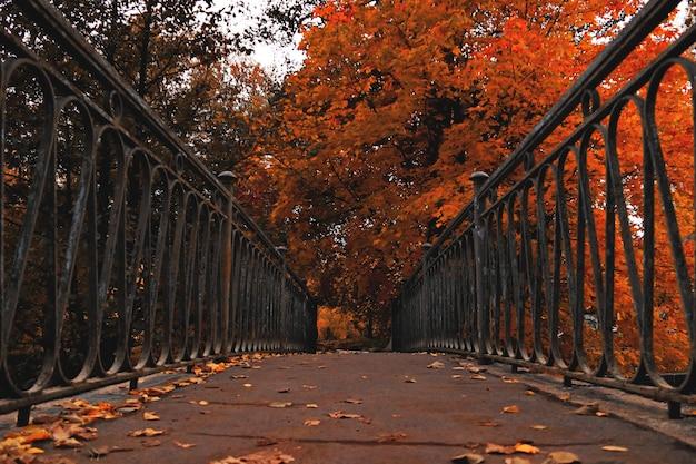 暗い秋の公園の黒い金属の手すりと古い橋