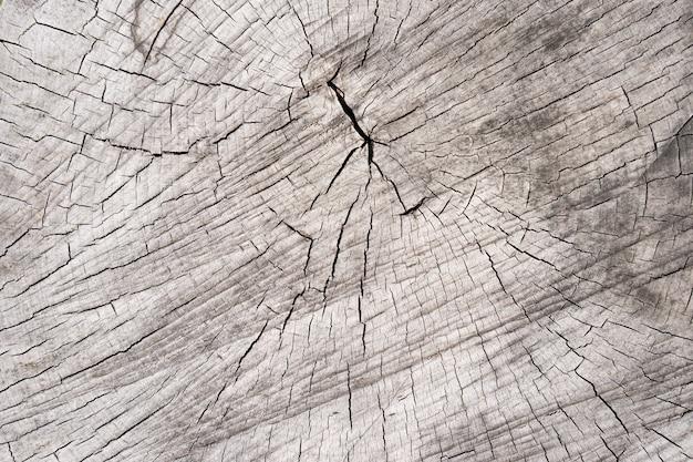Старая яркая деревянная текстура фоновой поверхности с естественным рисунком