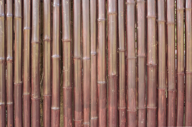 Old brown bamboo fence wall texture for background