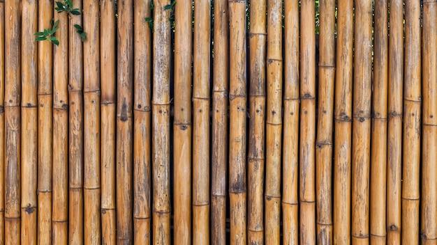 Старая коричневая бамбуковая стена с зеленым листом дерева для текстурированной природы абстрактного фона