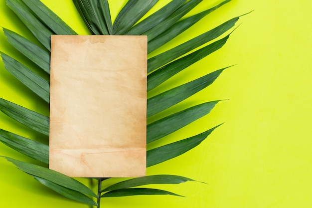 Old brown paper on tropical palm leaves on green surface