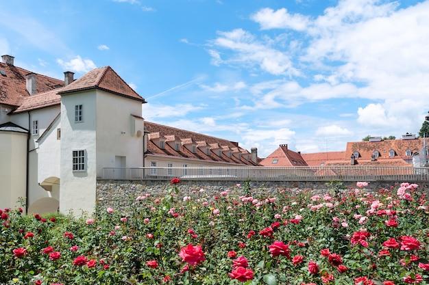 咲くバラを背景に赤瓦の屋根を持つ古い建物。