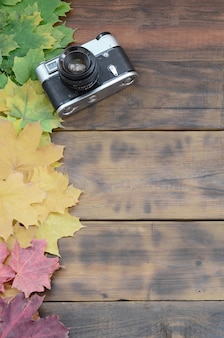 The old camera among a set of yellowing fallen autumn leaves