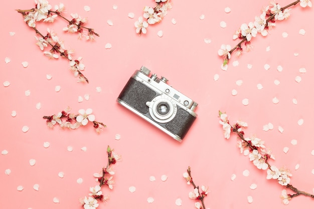 Old camera on a pink background.