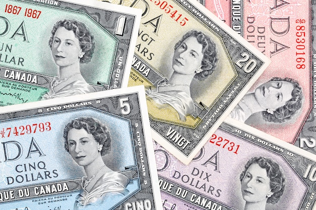 Old canadian dollars, a business, background