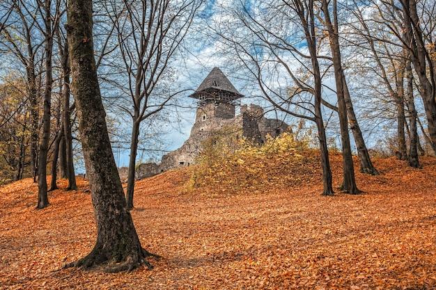 秋の森の古城。ウクライナ、ヨーロッパ