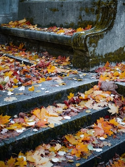The old catholic cemetery in the fall abandoned graves