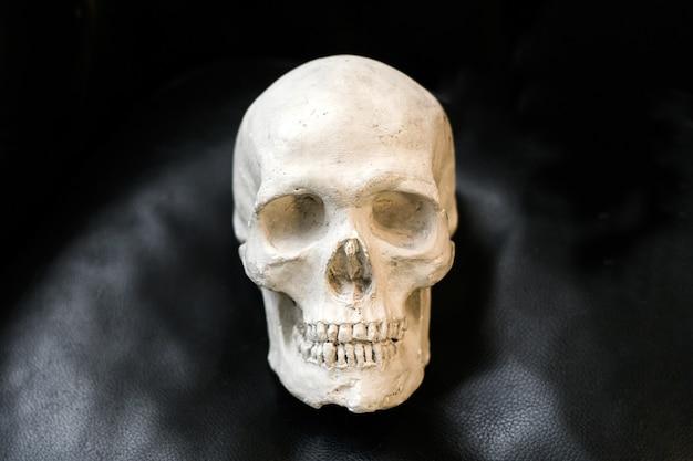 顔の俯瞰図のコピースペースと黒のテクスチャ背景に人間の頭蓋骨の古い欠けて損傷した石膏キャスト