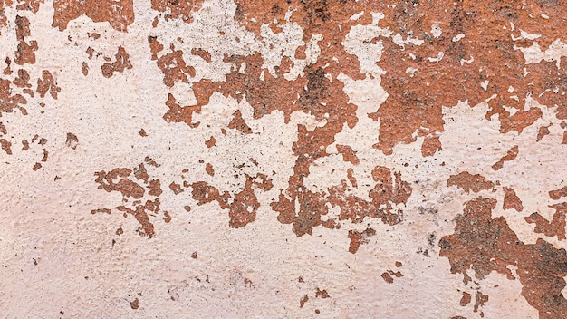Old concrete wall, natural texture. light background shadows.