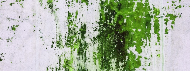 Old concrete wall stained with green paint