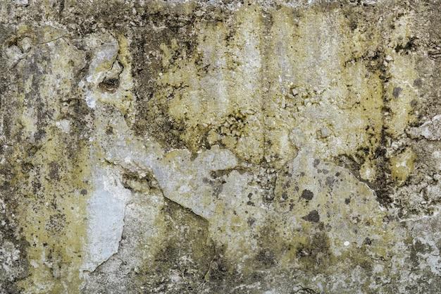 コケと破壊のある古いコンクリートの壁