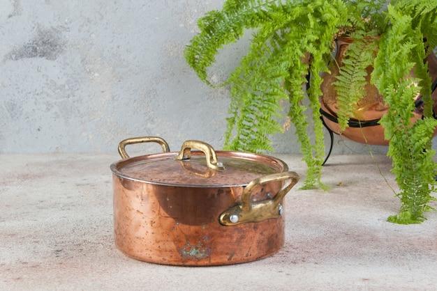 Старая медная запеканка с крышкой и латунными ручками и зеленое растение в медном цветочном горшке на бетонном столе.