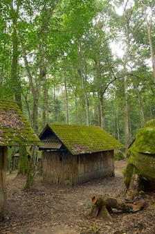 Old cottage, old wooden house, with moss among trees