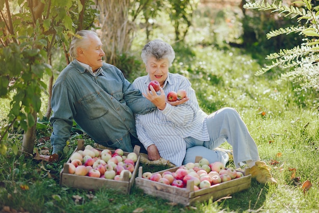 Old couple sitting in a summer garden with harvest
