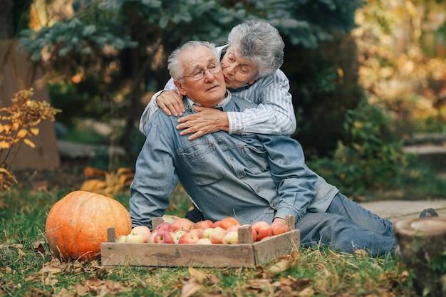 Старая пара сидит в летнем саду с урожаем