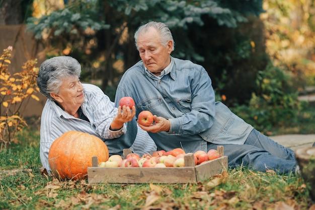 Vecchie coppie che si siedono in un giardino di estate con il raccolto