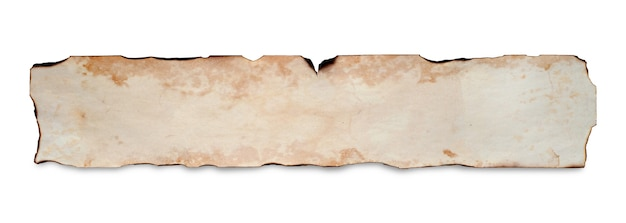 An old crumpled paper scroll. copy space. isolated on white.