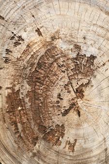 ひび割れや一年生の輪が付いた古い損傷したチーク材の丸太。木材の背景