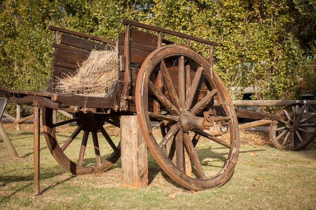 Старая разрушенная деревянная тележка в загородном саду