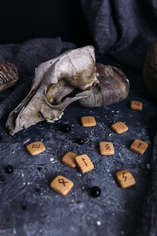 Old dog skull wooden runes and stones on the witch table