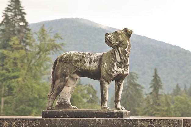 오래 된 개 동상