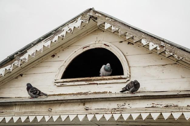 家の屋根の上の古い鳩小屋