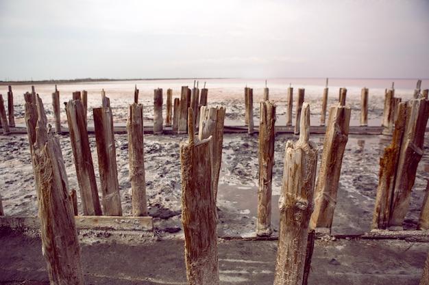 Старые засохшие бревна стоят на розовом соленом озере