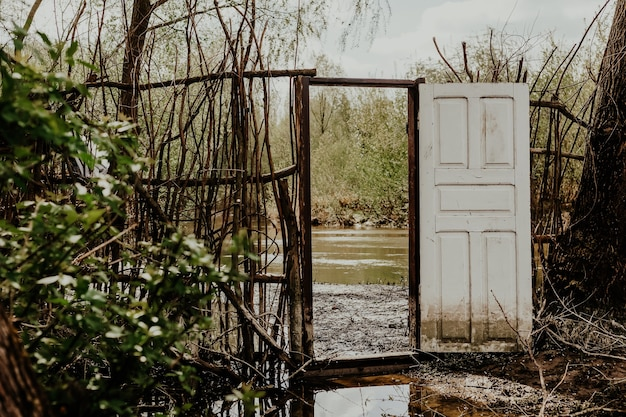 Old entrance door in forest near river