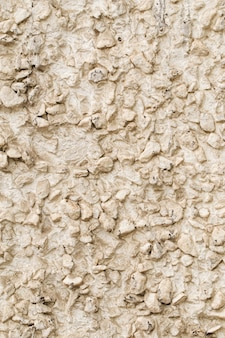 Old facade stone grey wall texture background
