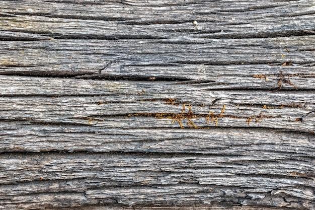 サンプルコンセプトの建設、食品、または工業用フラットレイヤーのモックアップまたはデザインパターンの古い色あせた木のテクスチャ背景。