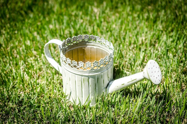 Old-fashioned watering can in the grass