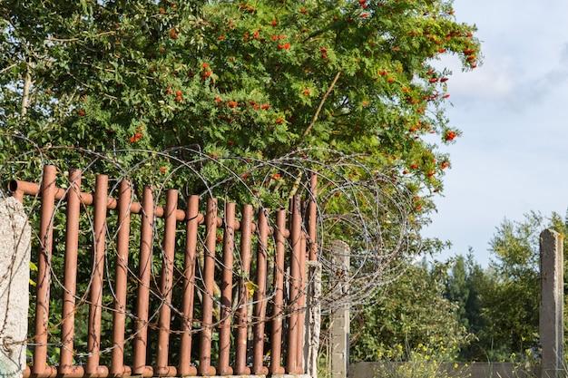 철조망으로 덮인 오래된 울타리