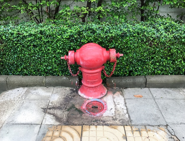 Old fire hydrant with the large valve.