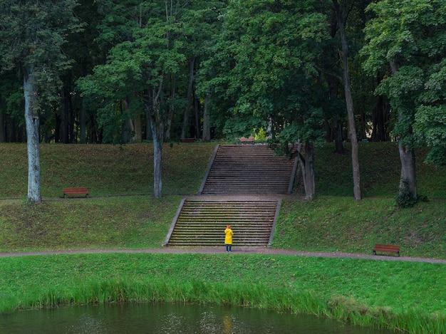 広い石段のある古い緑豊かな公園。ガッチナ。ロシア。