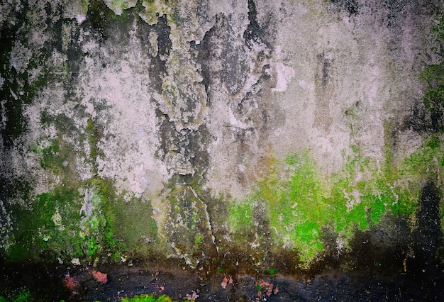 Old grunge background texture of old concrete wall