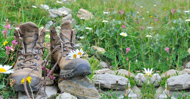 Old hiking shoes put on stone in grass and alpine flowers