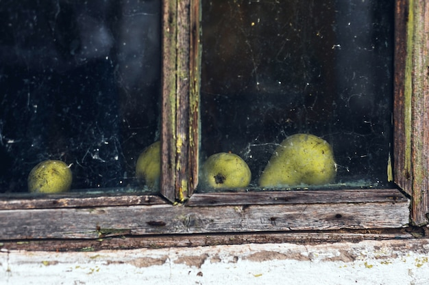 Old house window wooden frame and pears behind glass with spider web, abandoned place