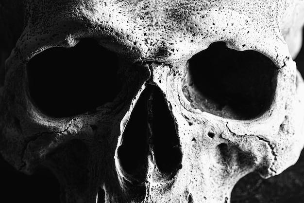Old human skull close up on black.