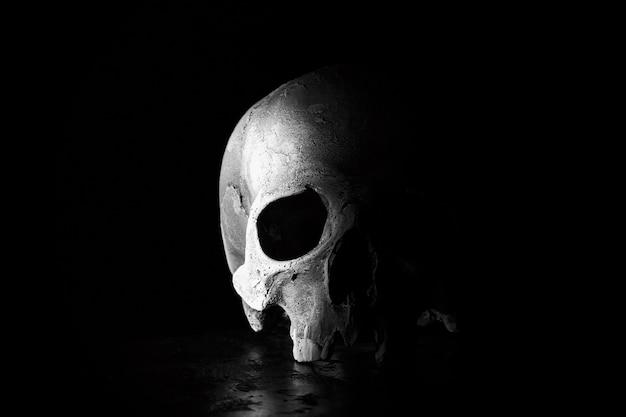 古い人間の頭蓋骨は黒でクローズアップ。