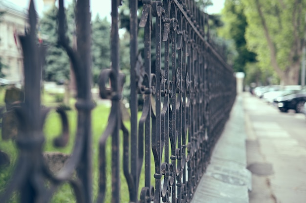 Old iron fense in the city park, close up.