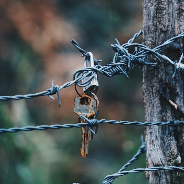 Old key abandoned in the metallic barbed wire fence on the street