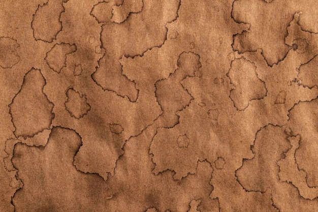 Old kraft texture, antique paper background with brown coffee stains