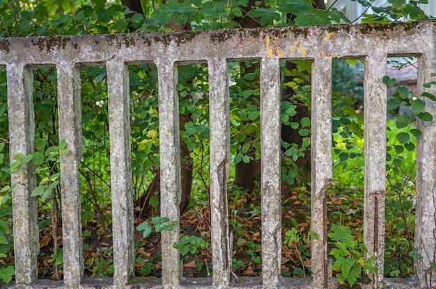 Старая решетка бетонного сломанного забора заделывают на заднем плане зеленые листья деревьев горизонтальные