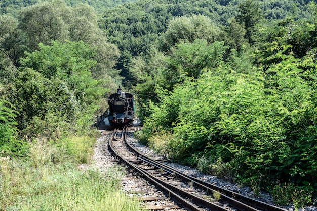 Old locomotive wheels. historical steam train passes through the deciduous forest.