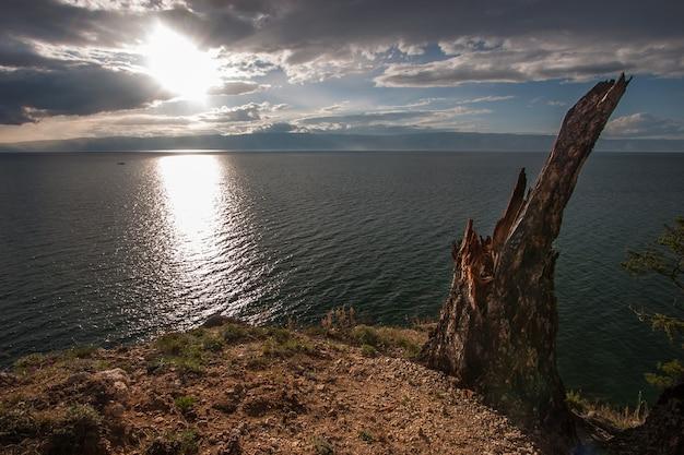 Старый одинокий сломанный пень на берегу байкала. в небе облака на горизонте горы. солнечная тропа на воде.