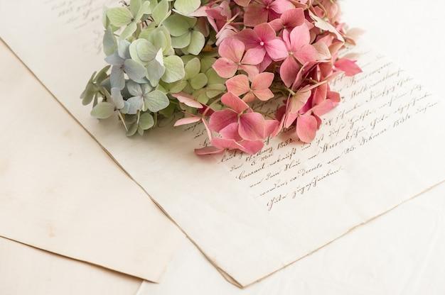 Старые любовные письма и садовые цветы гортензии. романтический винтажный стиль фона. выборочный фокус