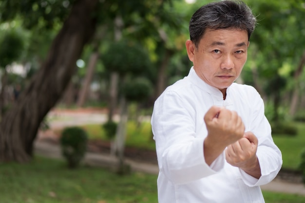 Old man practicing kungfu or tai chi in the park healthy lifestyle meditation exercise concept
