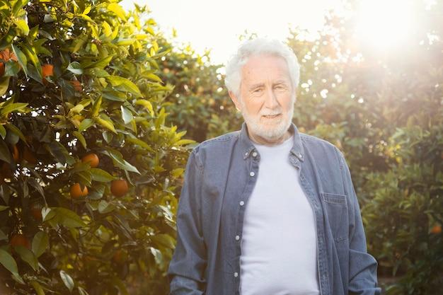 야외에서 그의 오렌지 나무 옆에 서있는 노인