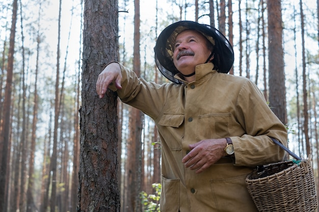 Old man walking. grandpa pensioner. senior hiking in forest. summer and hobbies. old bearded mushroomer in summer forest